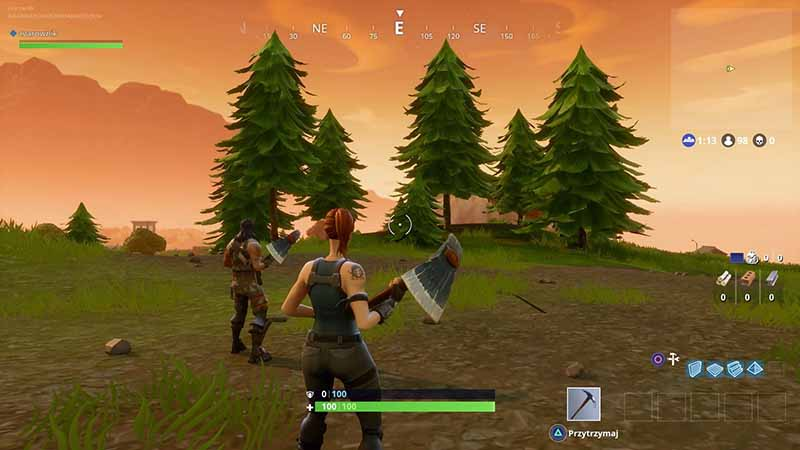 Fortnite Game Screen 6